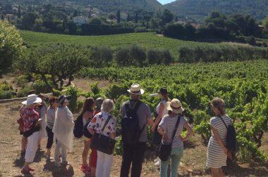 Visite touristique en région PACA pour des bénéficiaires de l'UNADEV
