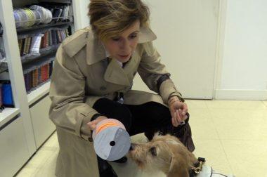 Isabelle choisit un tissu pour faire des vêtements pour chiens