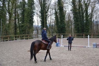 Un cavalier seul sur son cheval face à un obstacle.