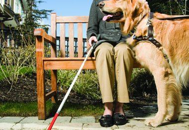 Femme avec une canne blanche et un chien-guide.