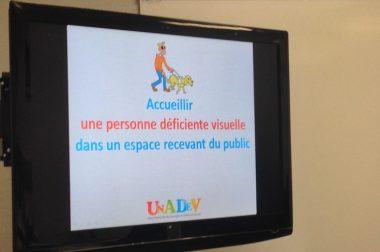 Ecran de formation UNADEV quie xplique les maladies de la rétine.