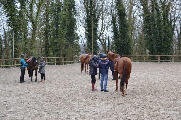 des non-voyants debout à côté des chevaux