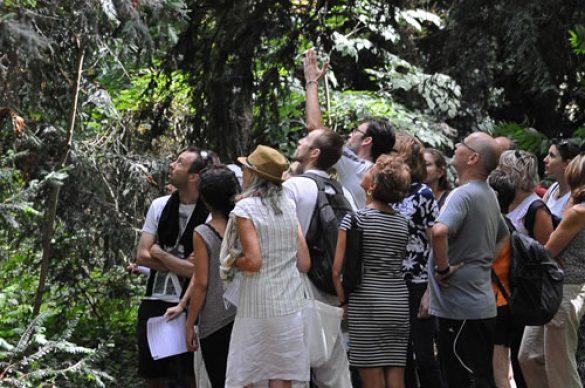 groupe dans un bois