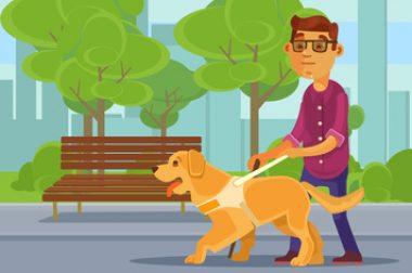 dessin chien guide et maitre aveugle