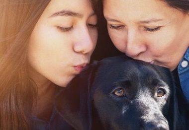 Une famille d'accueil et son chien dans la série de Disney+