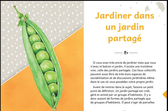 "Page extraite du livre ""Jardiner du bout des doigts"""